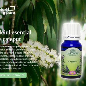 Ulei esential cajeput, Lakshmi, 10 ml, salbatic